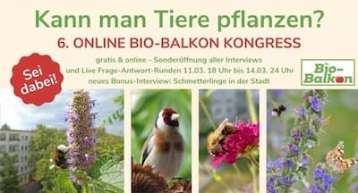Bio Balkon Online-Kongress Verlängerung