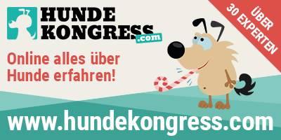 Hunde Online-Kongress   Hundehaltung von Heute