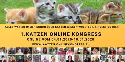 Katzen Online-Kongress   Katzenfutter, Naturheilverfahren, Erste Hilfe, ...