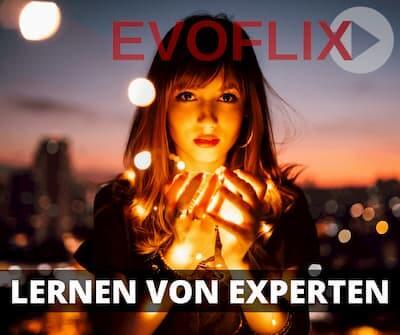 Evoflix Widget