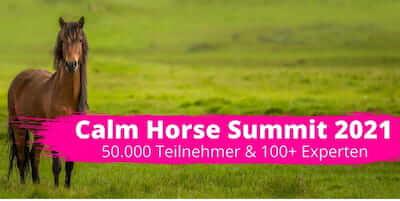 Calm Horse Summit   für Pferd & Reiter