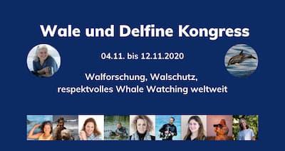 Wale und Delfine Online-Kongress