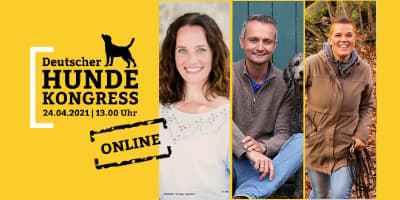 Hunde Online-Kongress | Alltagsproblem mit dem Hund?
